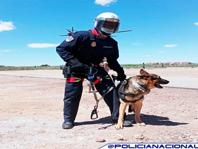Tipos de Policía Nacional